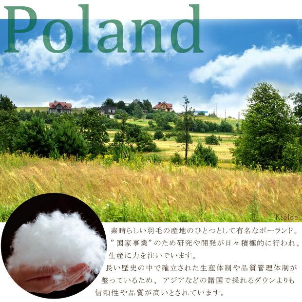 ポーランドについて