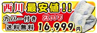 昭和西川羽毛ダック