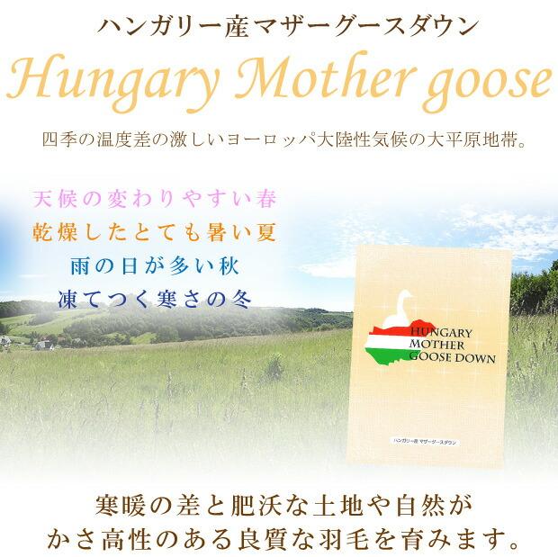 ハンガリー産ホワイトマザーグースタグ