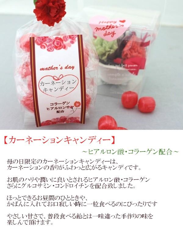 【母の日】カーネーションキャンディー