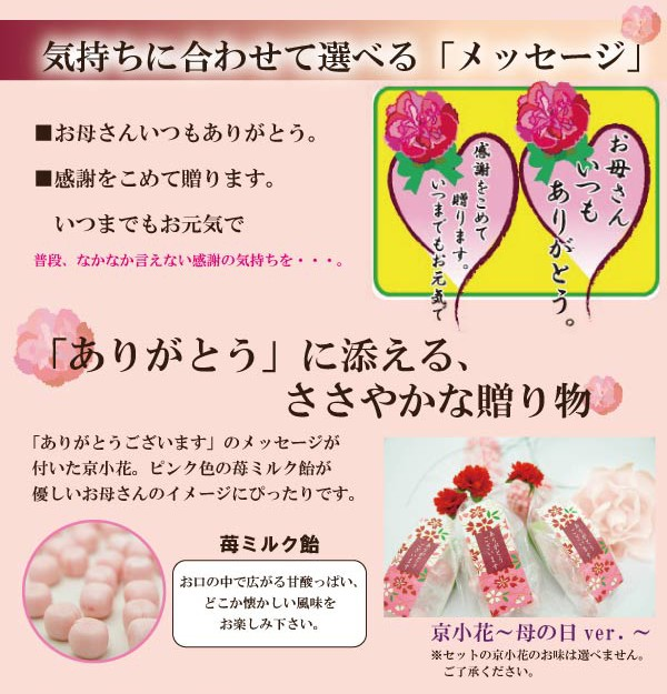 飴の素キャンディーセット