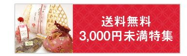 送料無料3,000円未満特集