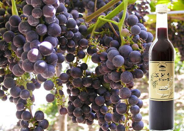 岩手県産葡萄使用!ぶどうジュース