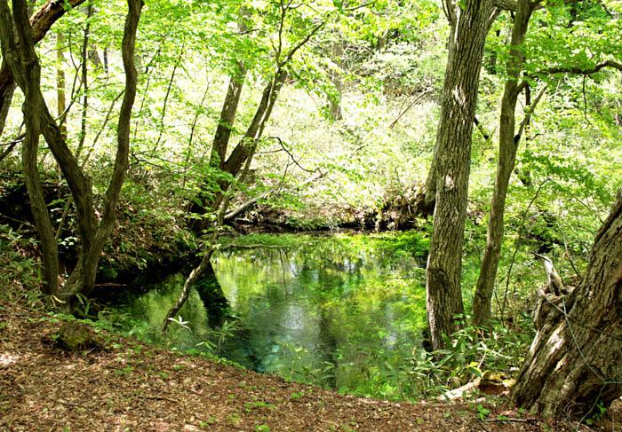 岩手の天然水