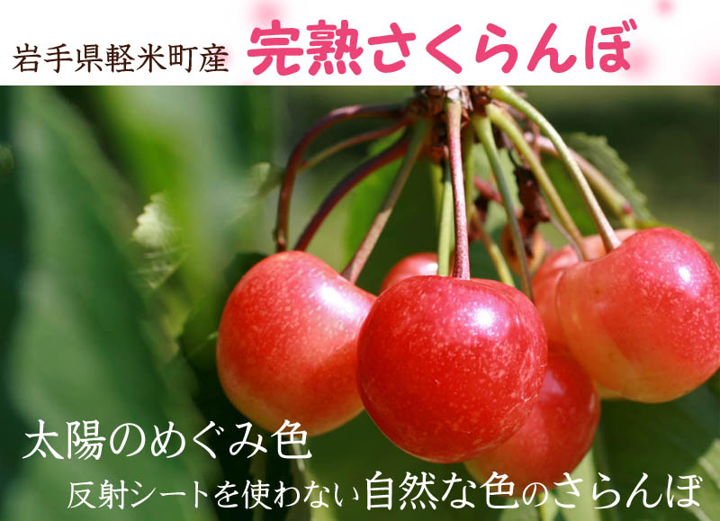 岩手県軽米町産さくらんぼ(佐藤錦)