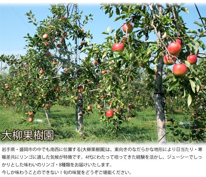 岩手のリンゴ農家、大柳果樹園