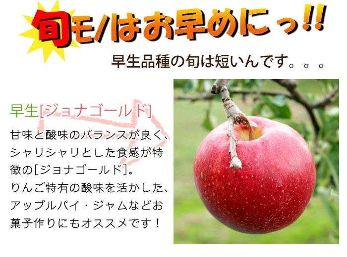 今しか食べれない!期間限定のりんご通販