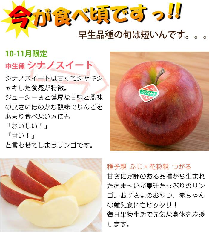 今しか食べれない!期間限定りんごシナノスイート