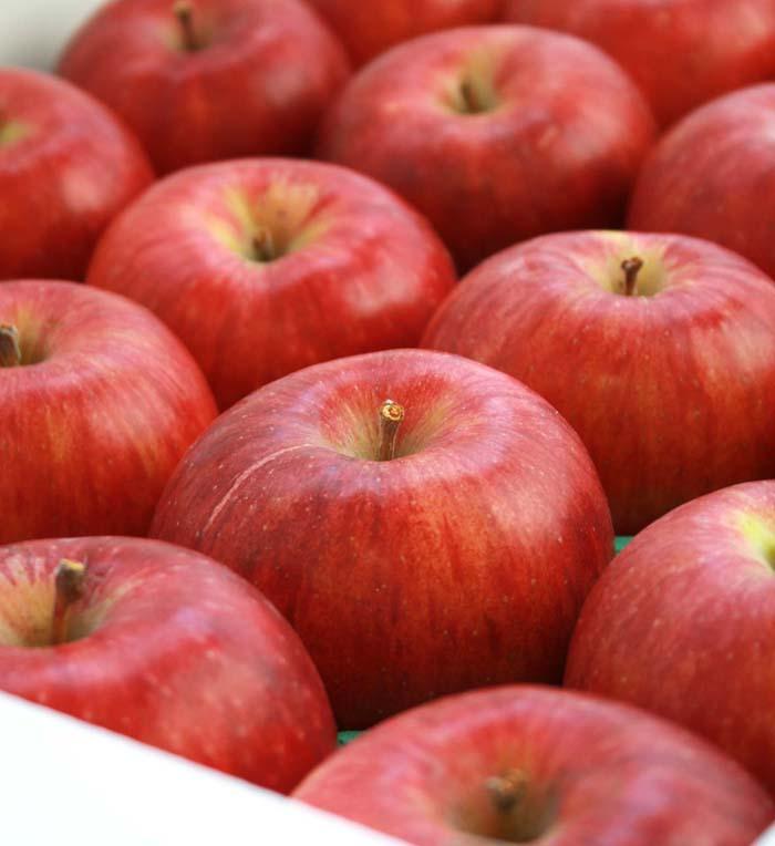 つがる(リンゴ)