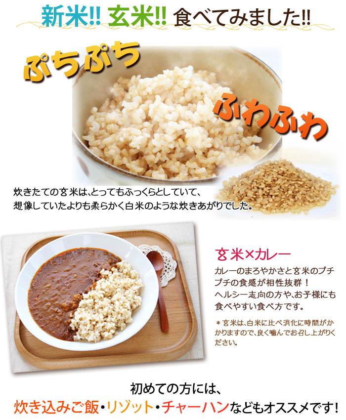 ふっくらプチプチ食感の玄米