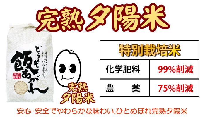 特別栽培米・ひとめぼれ