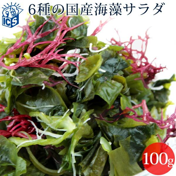 海藻サラダ100