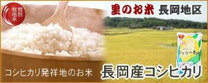 長岡産コシヒカリ(ひかり一番地)
