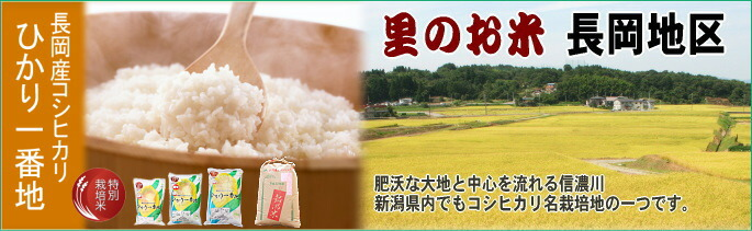 【里のお米】長岡産コシヒカリ
