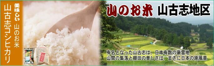 【山のお米】山古志産コシヒカリ