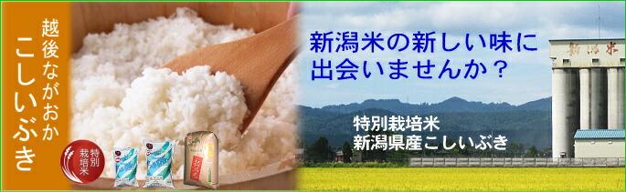 【特別栽培米】新潟こしいぶき(長岡地区限定)