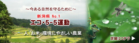 エコ・5-5運動