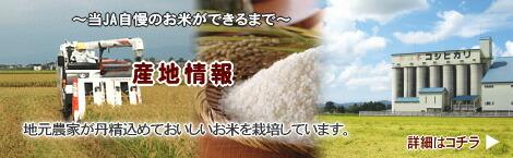栽培地情報(新潟県)