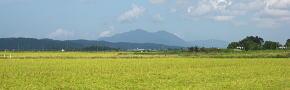 越後平野と弥彦山