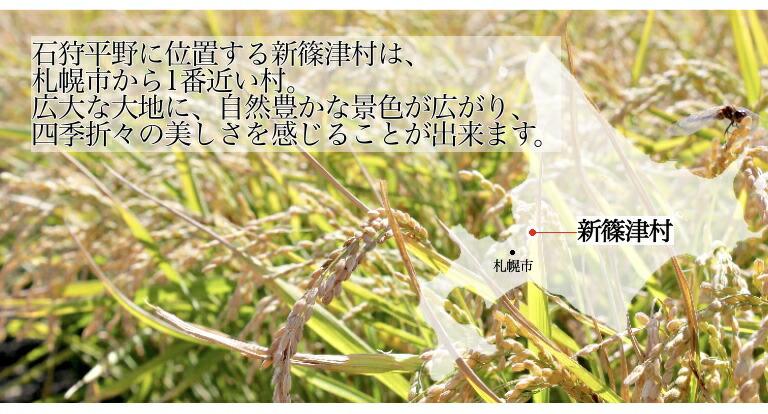 新篠津について1
