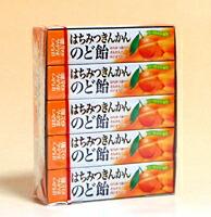 ★まとめ買い★ ノーベル はちみつ金柑のど飴スティック ×10個【イージャパンモール】