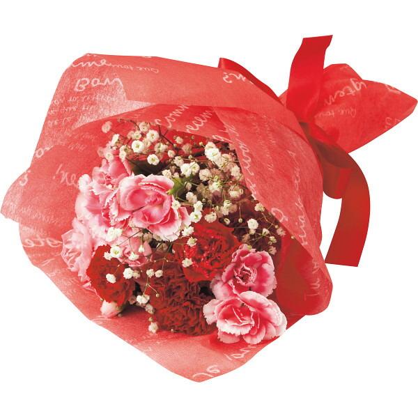 【送料無料】【母の日】カーネーション花束と感謝バウムクーヘンのセット【代引不可】【ギフト館】