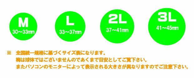 梅のサイズ