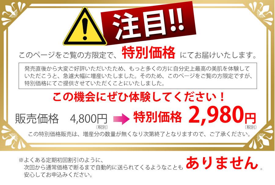 特別価格2980円