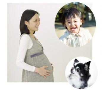 子どもや妊婦さんにカワイがおすすめ