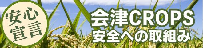 会津クロップス 安全への取り組み