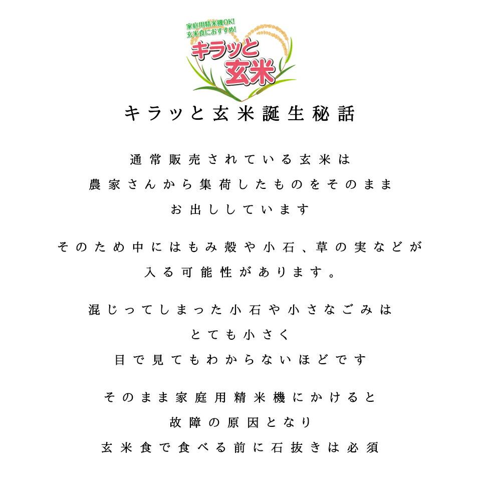 キラッと玄米01