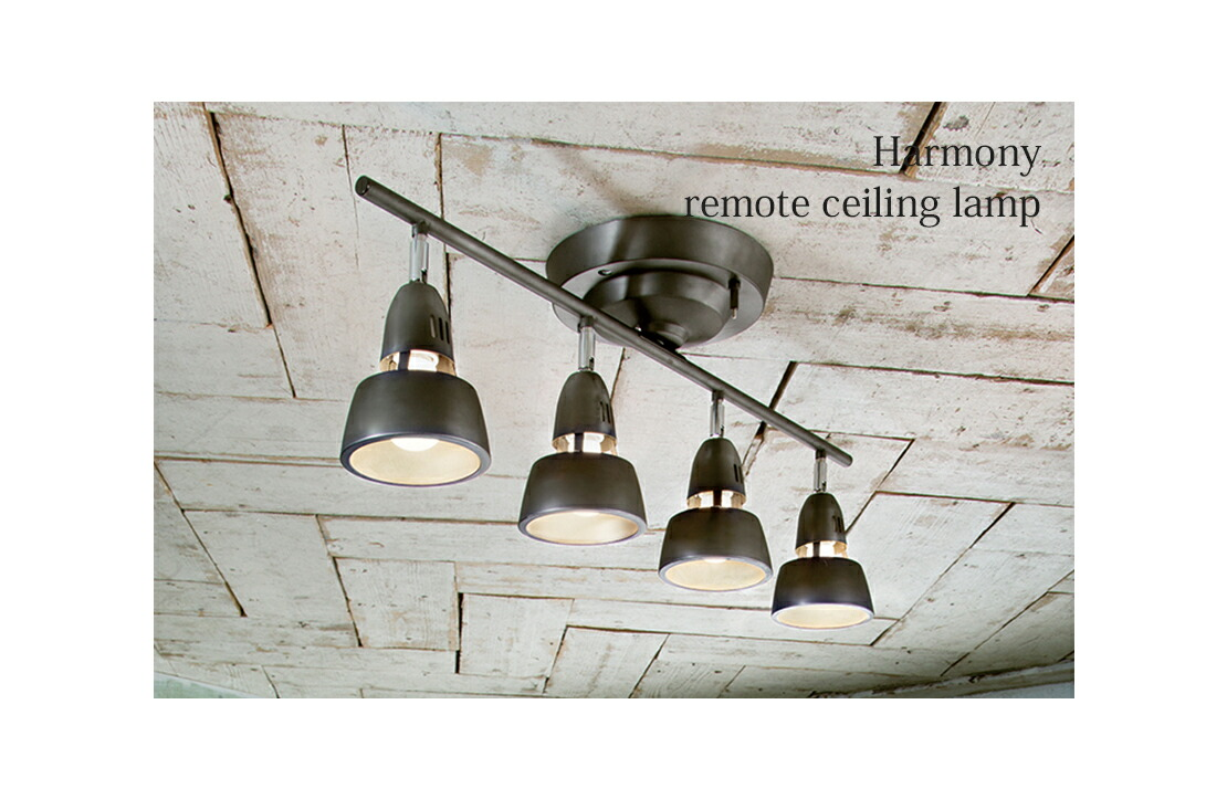 Harmony-remote ceiling lamp