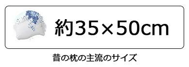 約35×50cm