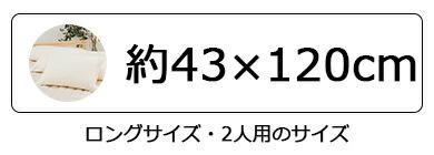 約43×120cm
