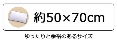 約50×70cm