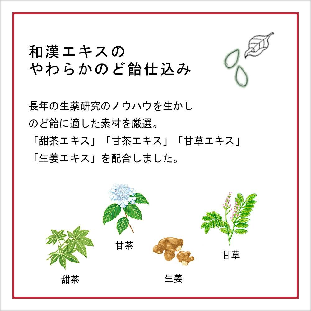 和漢エキスのやわらかのど飴仕込み 長年の生薬研究のノウハウを生かしのど飴に適した素材を厳選。「甜茶エキス」「甘茶エキス」「甘草エキス」「生姜エキス」を配合しました。