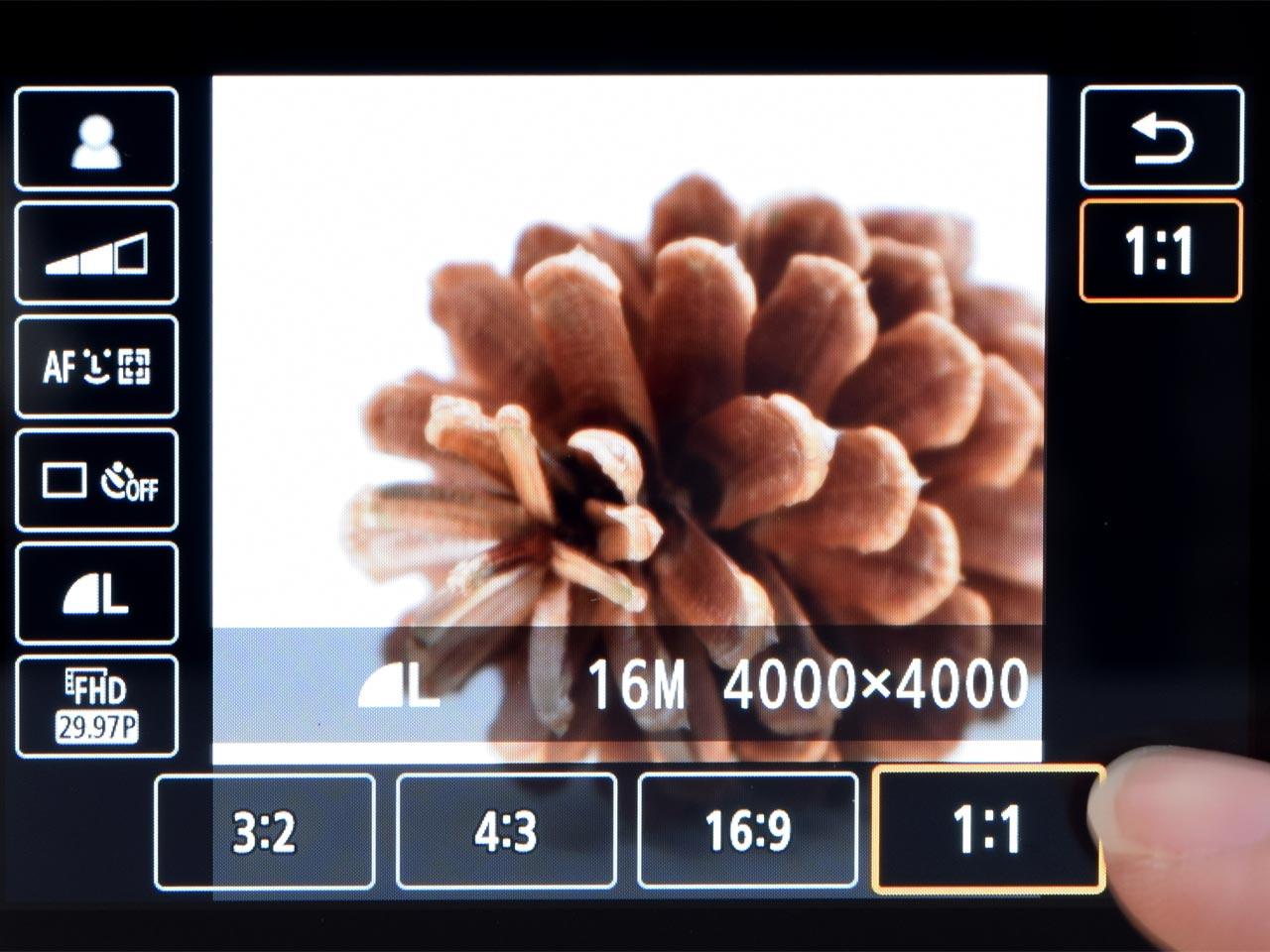 Kiss Mの液晶画面表示イメージ