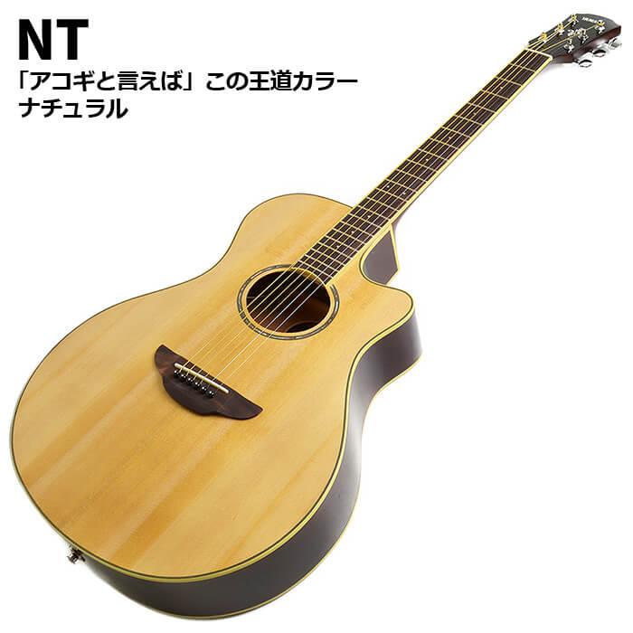 ヤマハ APX600 NT