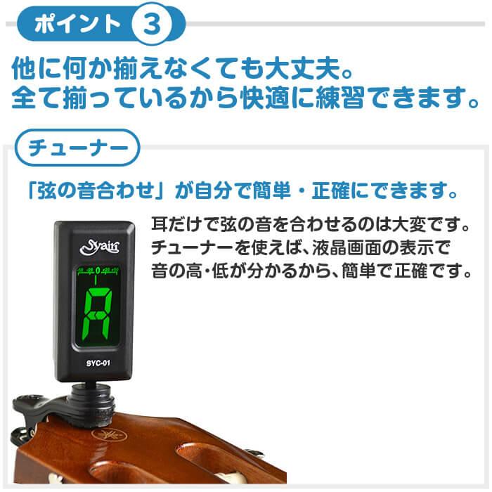 エレキ 初心者セット DL チューナー
