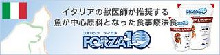 フォルツァ10/フォルツァ ディエチ/FORZA10