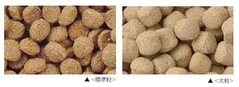 標準粒と大粒の比較