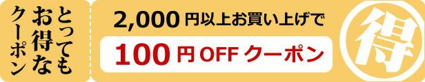 2000円100円OFFクーポン