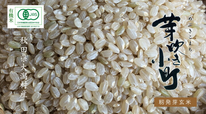 有機発芽玄米