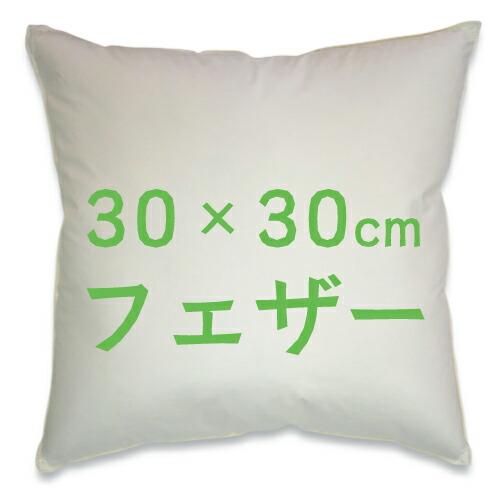 30×30フェザーヌードクッション