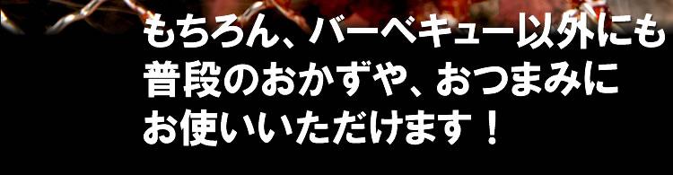 【特撰】情熱のバーベキューセット