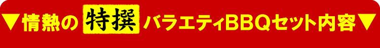 【情熱特撰】バラエティBBQセット