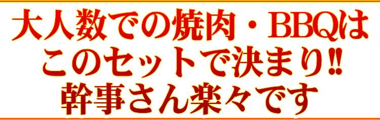 【情熱特撰】人気盛りBBQセット