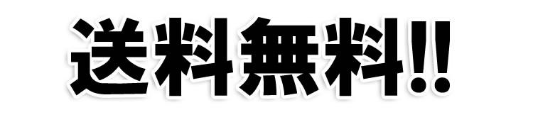 テッチャン(シマチョウ)