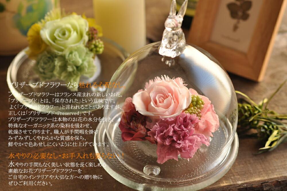 電報、結婚式、祝電、誕生日、結婚祝い、プリザーブドフラワー、結婚記念日、ブリザードフラワー