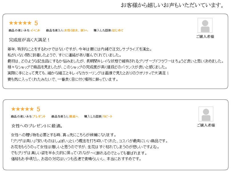 wd-box-7.jpg